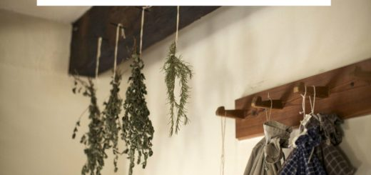 Dry your own herbs, herbs drying, how to dry your own herbs